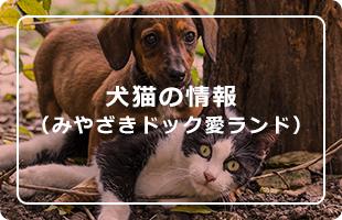 犬猫の情報(みやざきドック愛ランド)